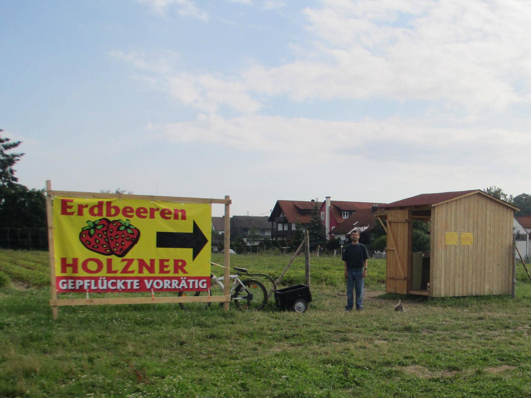 Erdbeerfeld Mainburg von Erdbeeren Holzner - Erdbeeren selbst pflücken bei Erdbeeren Holzner in Mainburg