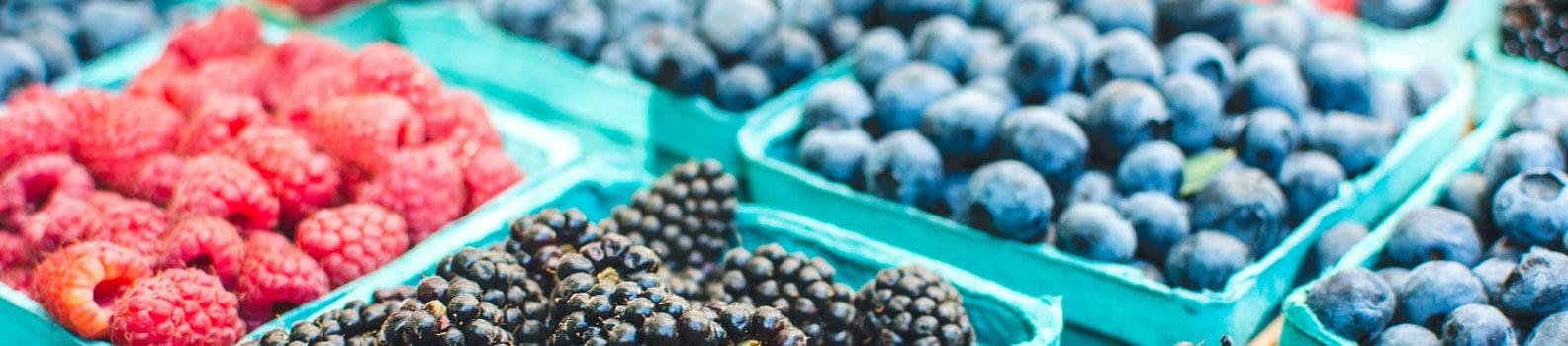 Erdbeeren Holzner - Unsere Beeren: Himbeeren, Heidelbeeren, Erdbeeren regional udn frisch direkt vom Feld